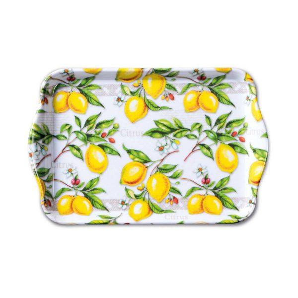 ambiente dienblad melamine citrus 13x21