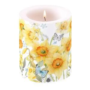 Ambiente kaars Classic Daffodils big