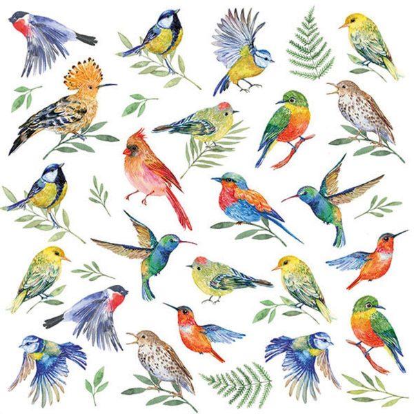 Ambiente servetten Birds Votes