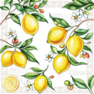 ambiente servetten citrus fsc mix