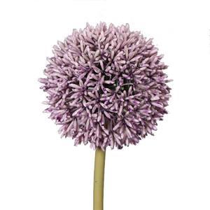 Brynxz Allium Lilac 67cm