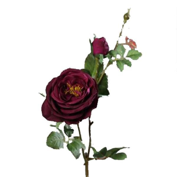 Brynxz Rose Dark Fuchsia 62cm