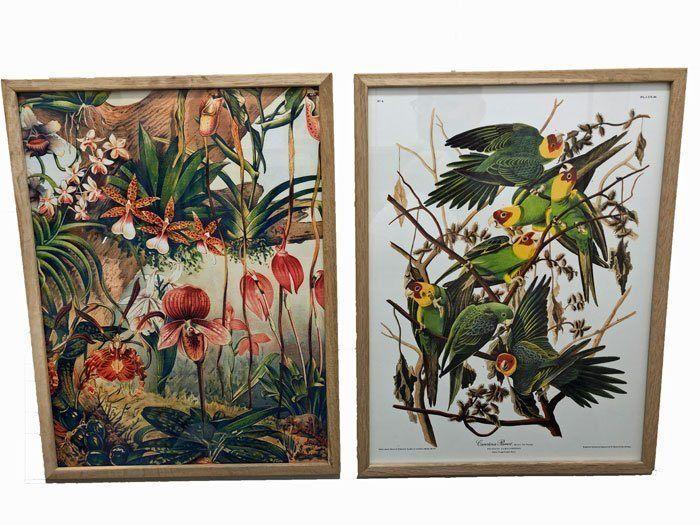 dybdahl posters bloemen en vogels
