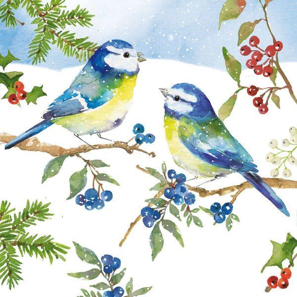 PPD servetten Blue Birds