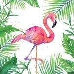 ppd servetten tropical flamingo small